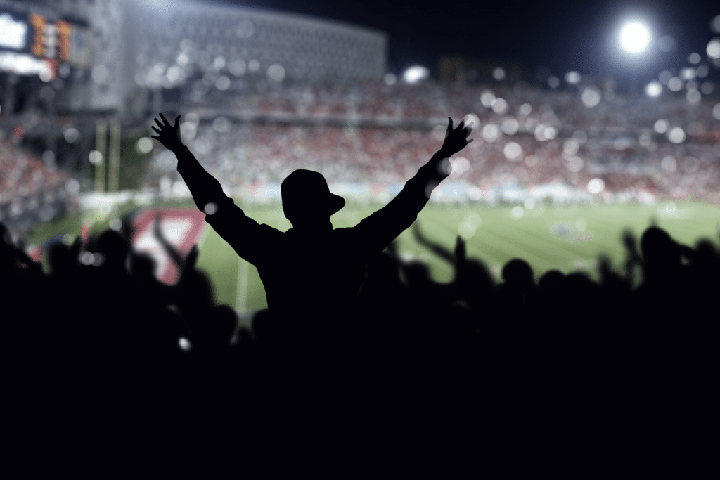 Access Facilitation at stadiums
